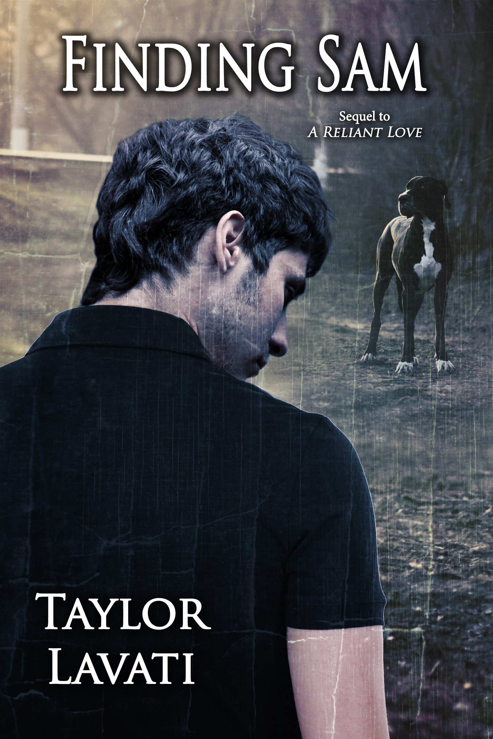 Finding Sam (A Reliant Love, #2)  by  Taylor Lavati