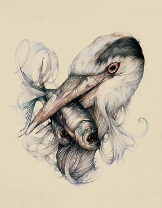 The Heron  by  Dorthe Nors