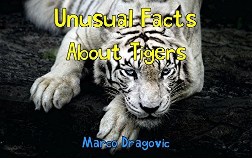 Unusual Facts About Tigers: Picture Book For Kids  by  Marco Dragovic