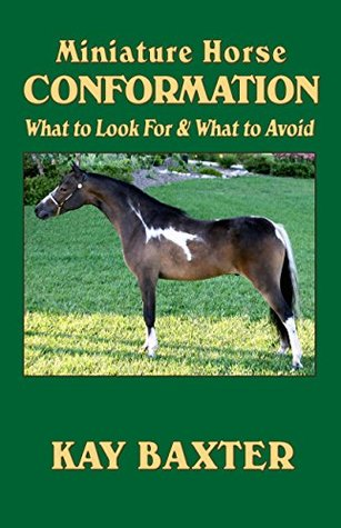 Miniature Horse Conformation: What to Look For & What to Avoid Kay Baxter