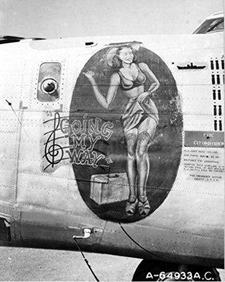 A History Of The B-24 Liberator in Over 500 Photographs, Stories And Analyisis: Including The U.S. Army Air Forces in World War II: Combat Chronology 1941 - 1945 - American Air Power in WWII  by  U.S. Department of Defense