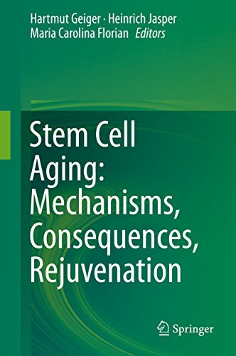 Stem Cell Aging: Mechanisms, Consequences, Rejuvenation  by  Hartmut Geiger