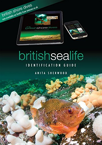 British Sea Life Identification Guide Anita Sherwood