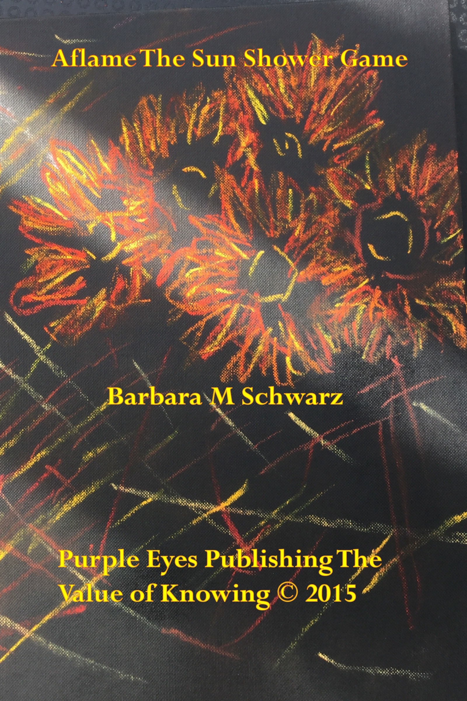 Aflame The Sun Shower Game  by  Barbara M Schwarz