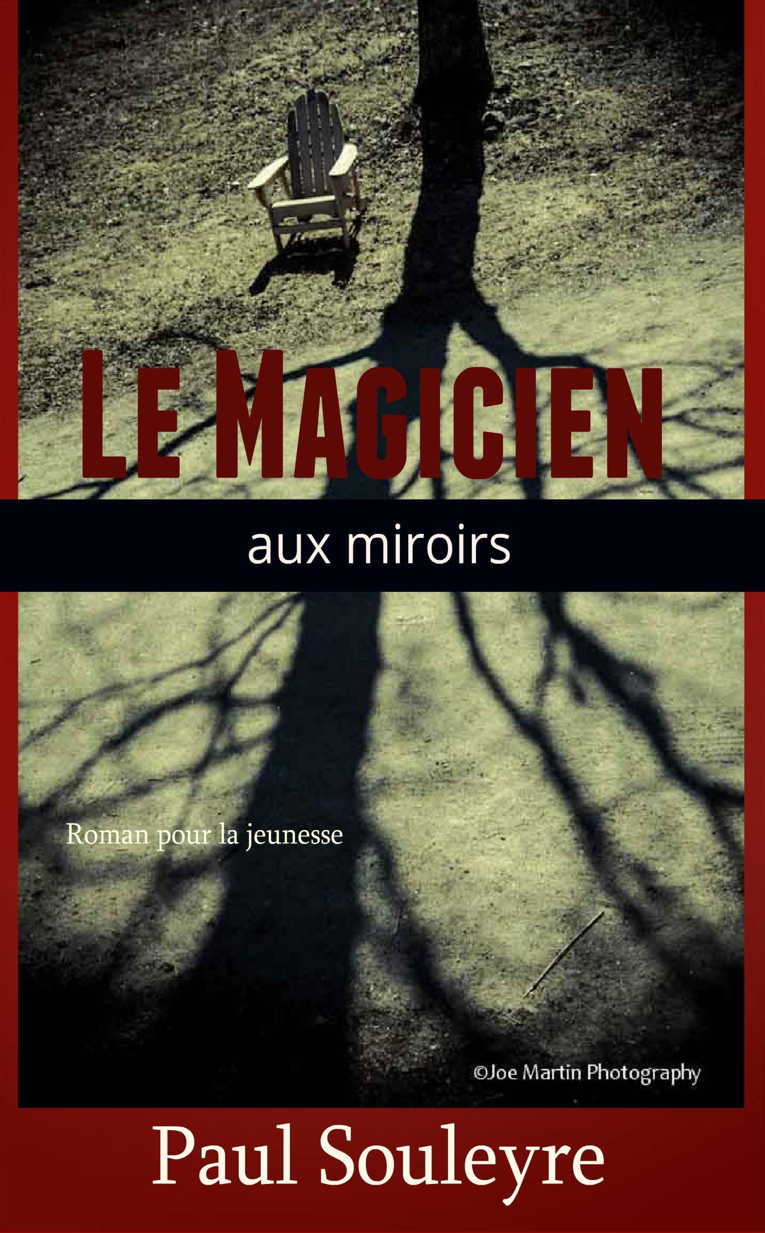 Le Magicien aux miroirs  by  Paul Souleyre