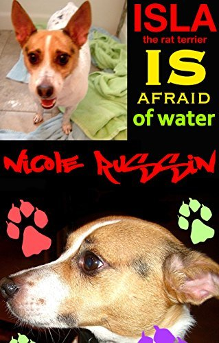Isla the Rat Terrier Is Afraid of Water Nicole Russin