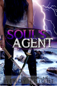 The Souls Agent  by  Wendy  Knight