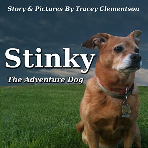 Stinky: The Adventure Dog  by  Tracey Clementson