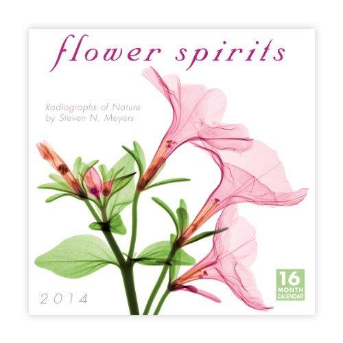 Flower Spirits 2014 Wall Steven N. Meyers