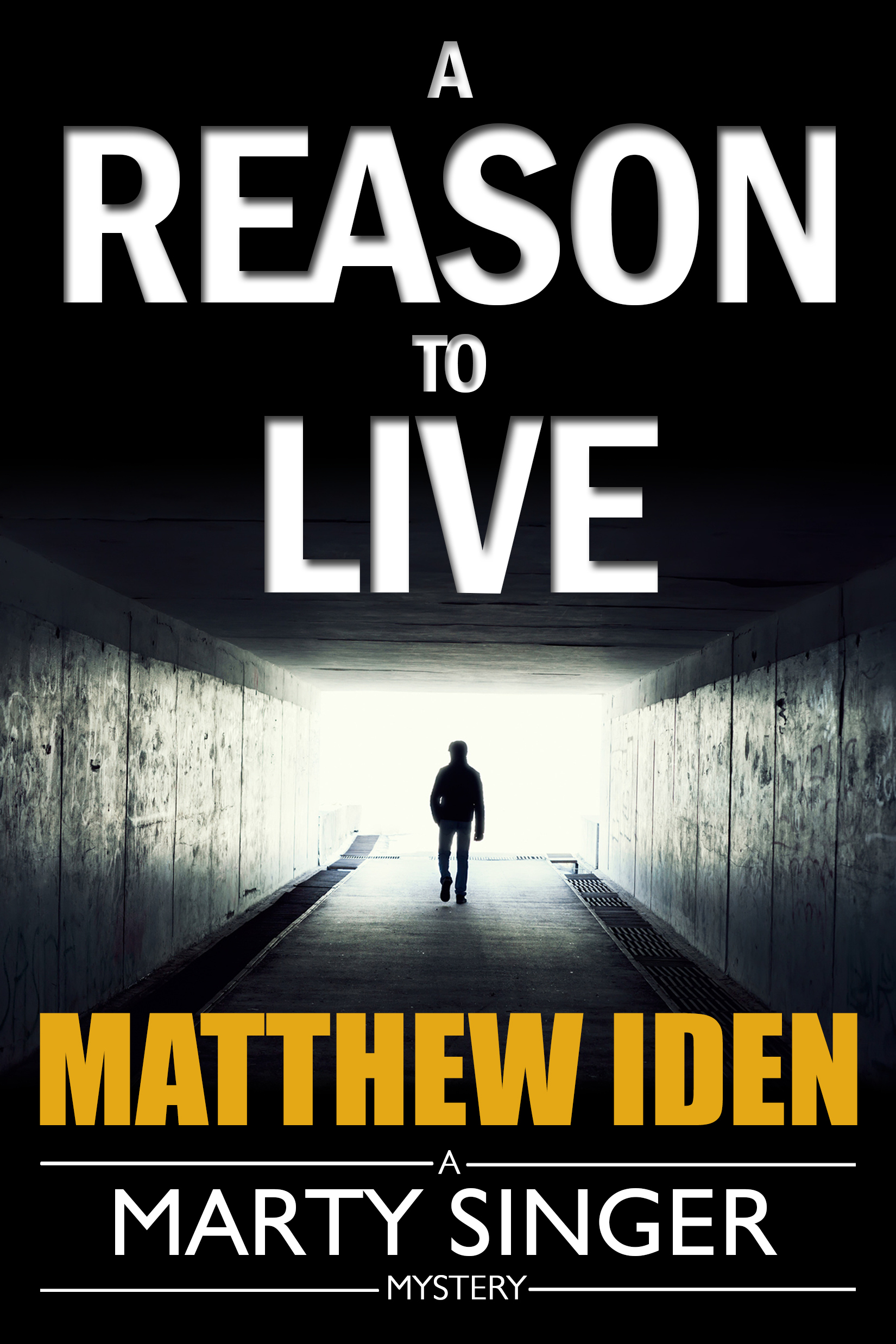 Reason to Live, A Matthew Iden