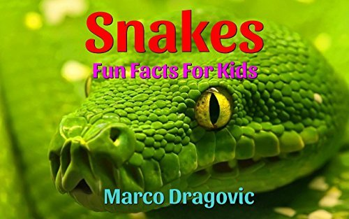 Snakes: Fun Facts For Kids, Picture Books For Kids Marco Dragovic