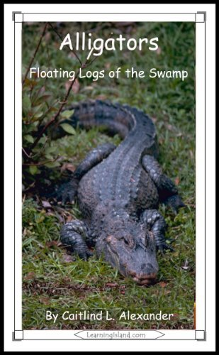 Alligators: Floating Logs of the Swamp (15-Minute Books Book 346) Caitlind Alexander