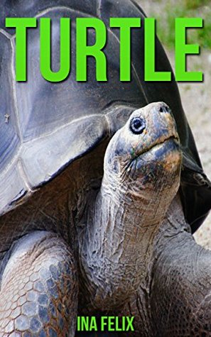 Turtle: Children Book of Fun Facts & Amazing Photos on Animals in Nature - A Wonderful Turtle Book for Kids aged 3-7  by  Ina Felix