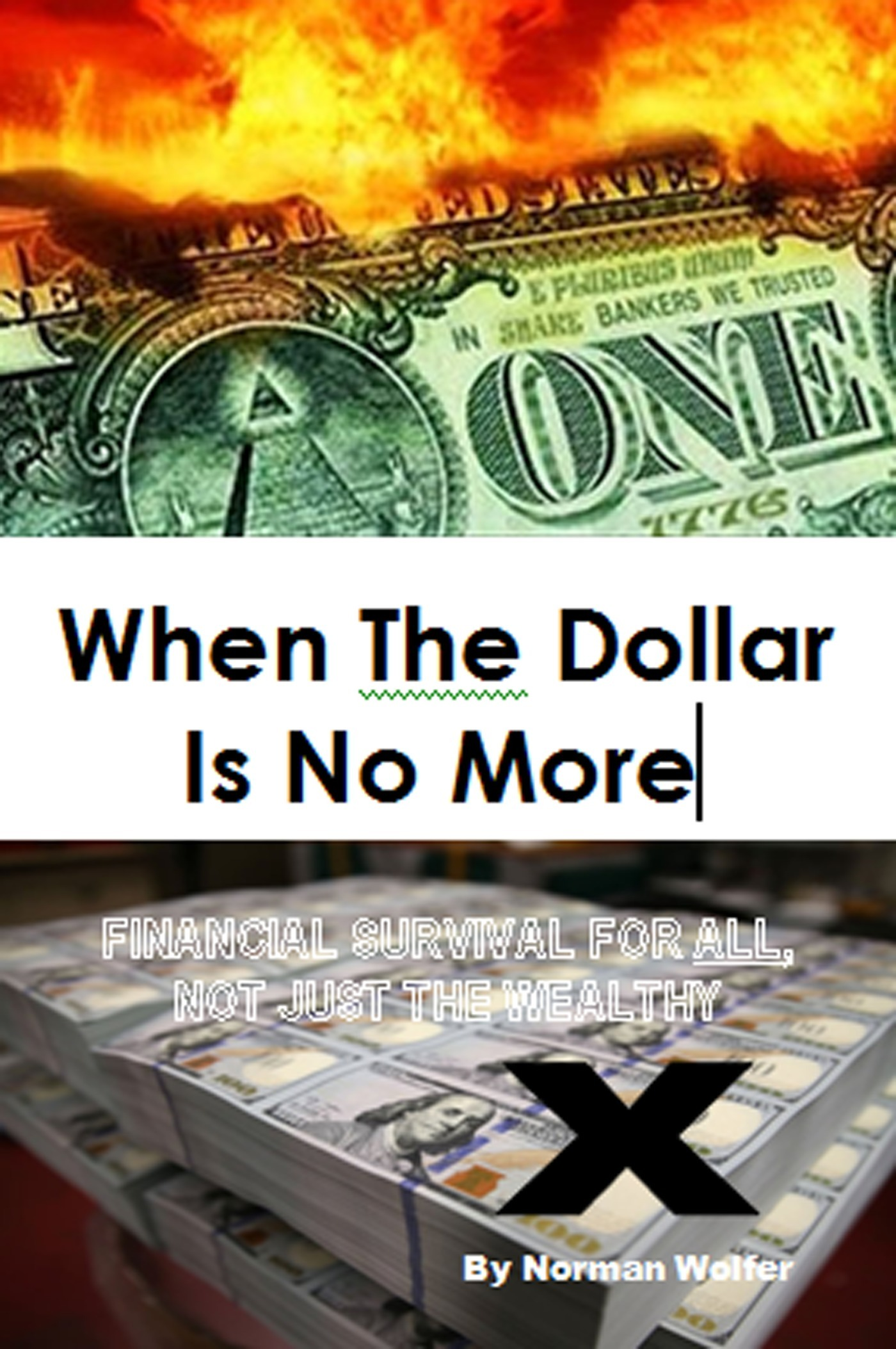When The Dollar Is No More: Financial Survival For All, Not Just The Wealthy Norm Wolfer