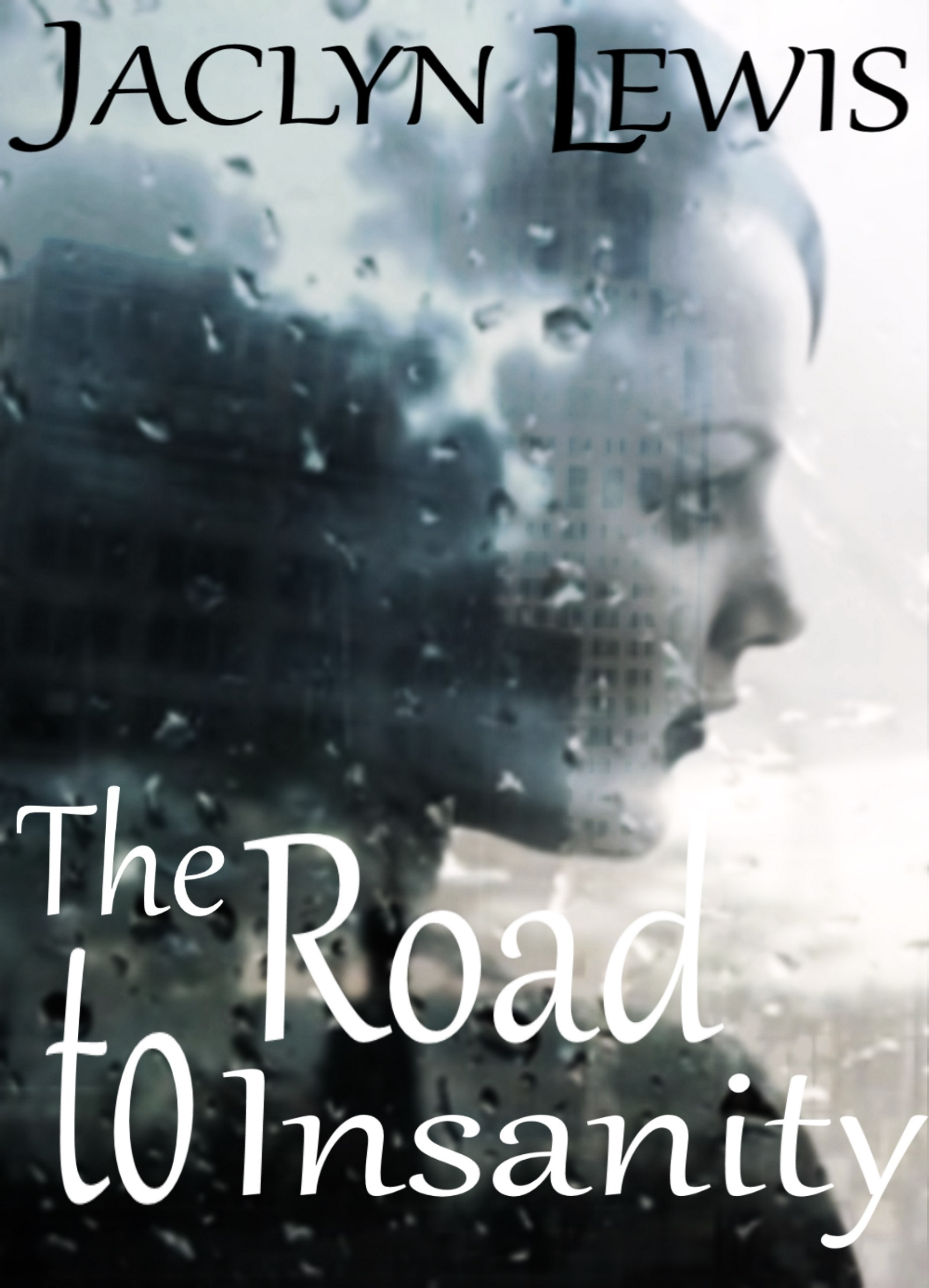 The Road to Insanity  by  Jaclyn Lewis