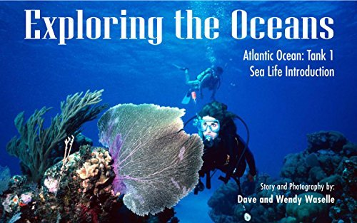 Exploring the Oceans, Atlantic Ocean: Tank 1: Sea Life Introduction  by  Wendy Waselle