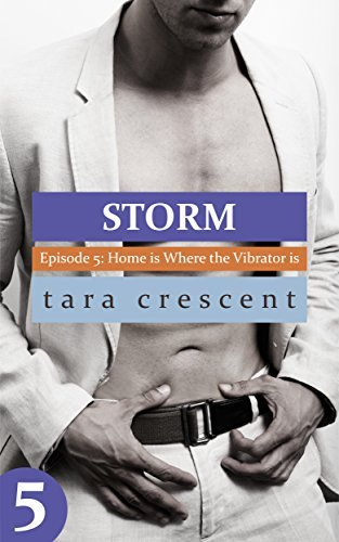 Storm: Home is Where the Vibrator is - A BDSM Romance (Storm Episode 5)  by  Tara Crescent
