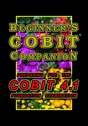 Beginners COBIT Companion: Preparing for the Cobit 4.1 Foundation Examination  by  T. Gilling