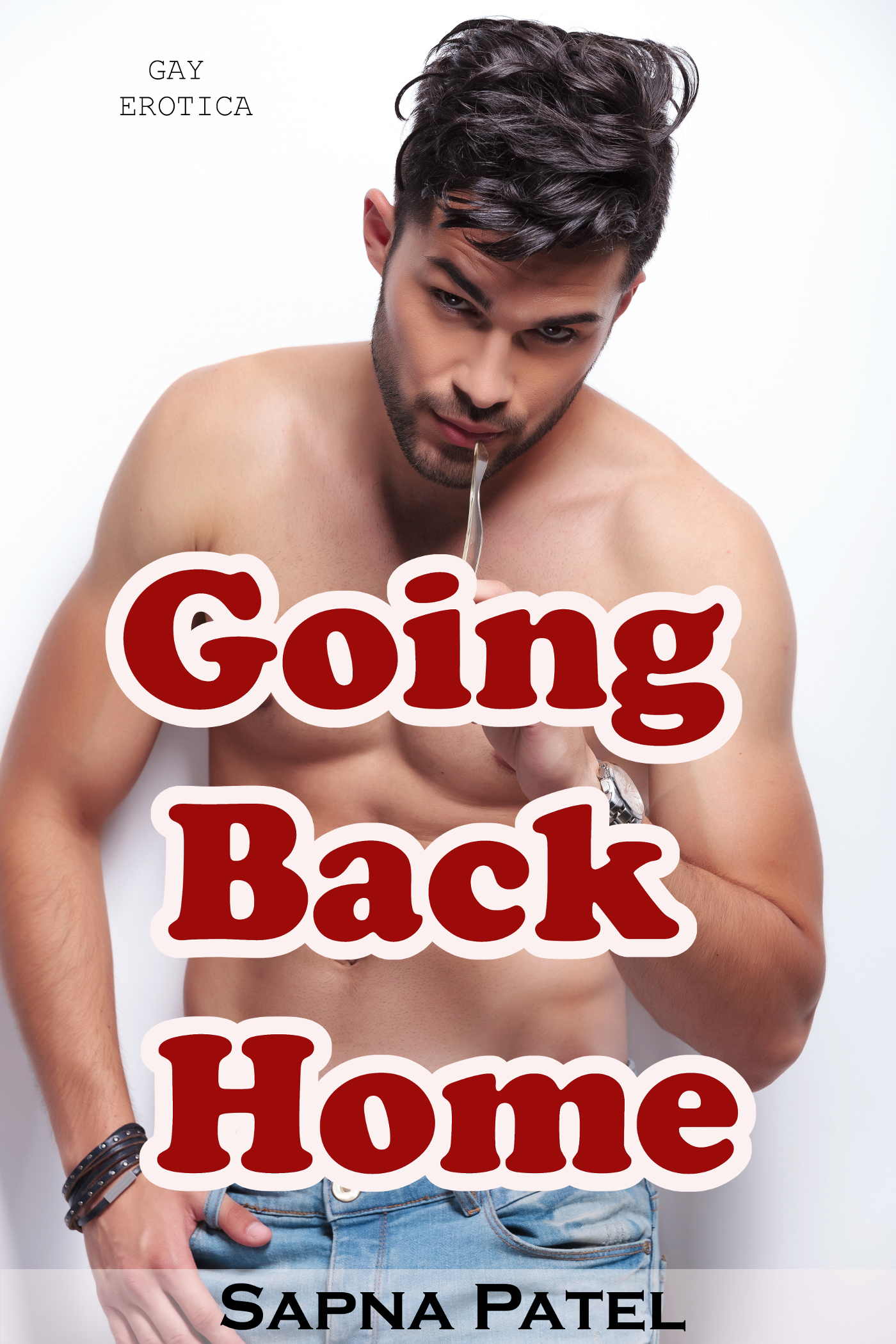 Gay Erotica: Going Back Home  by  Sapna Patel