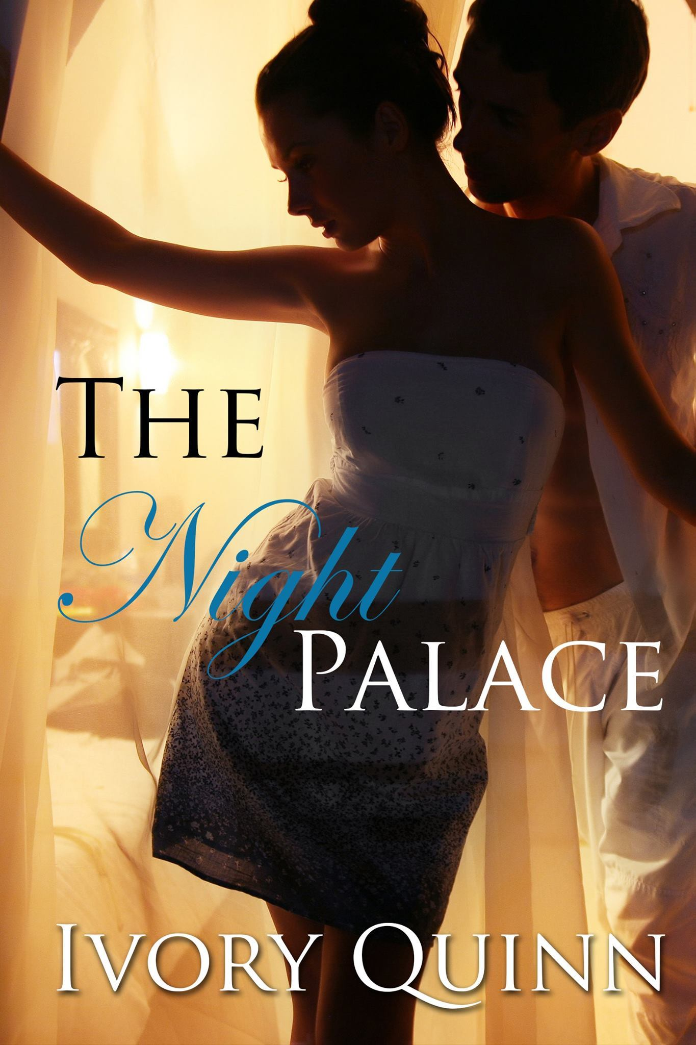The Night Palace  by  Ivory Quinn