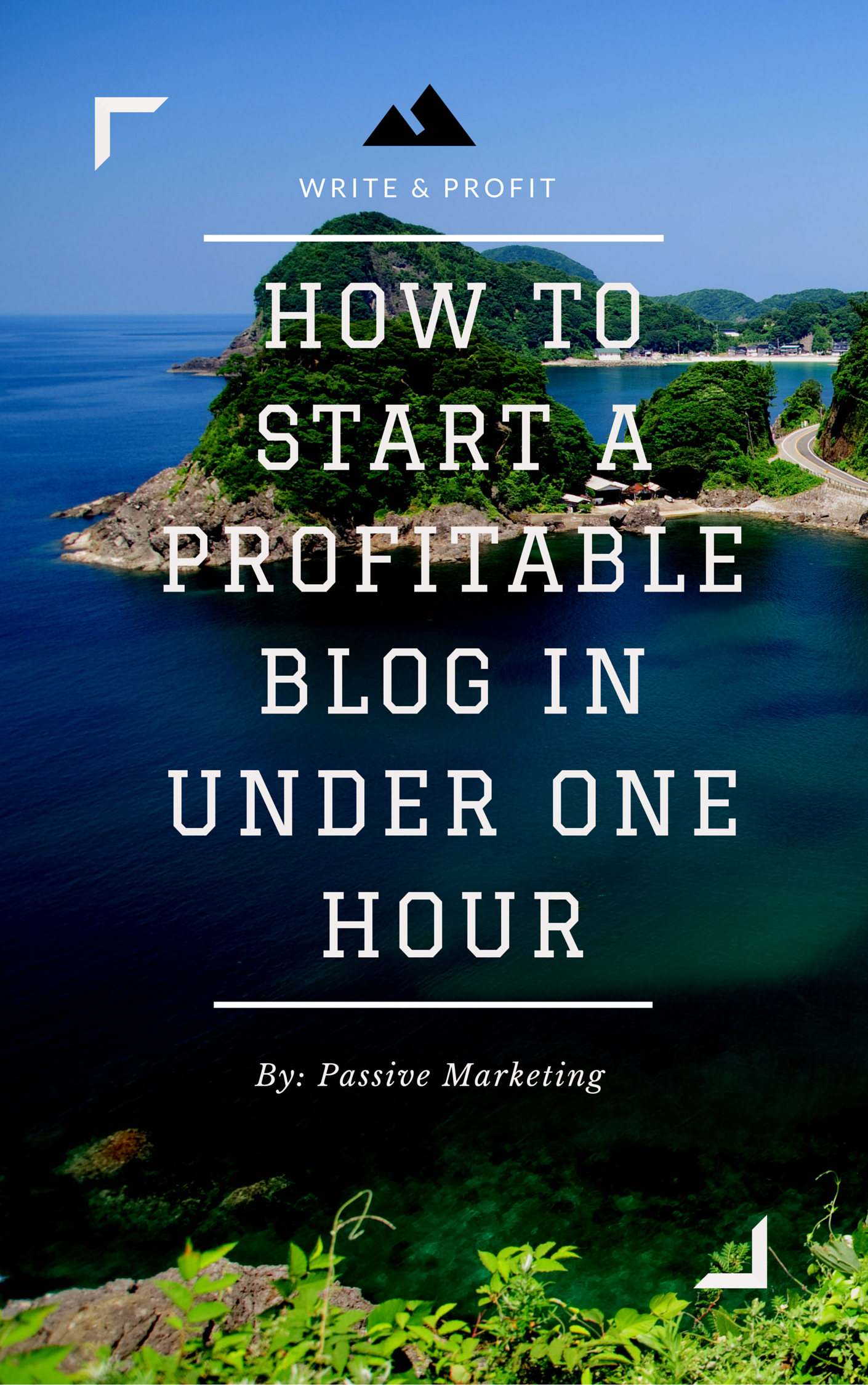 How To Start A Profitable Authority Blog In Under One Hour  by  Passive Marketing