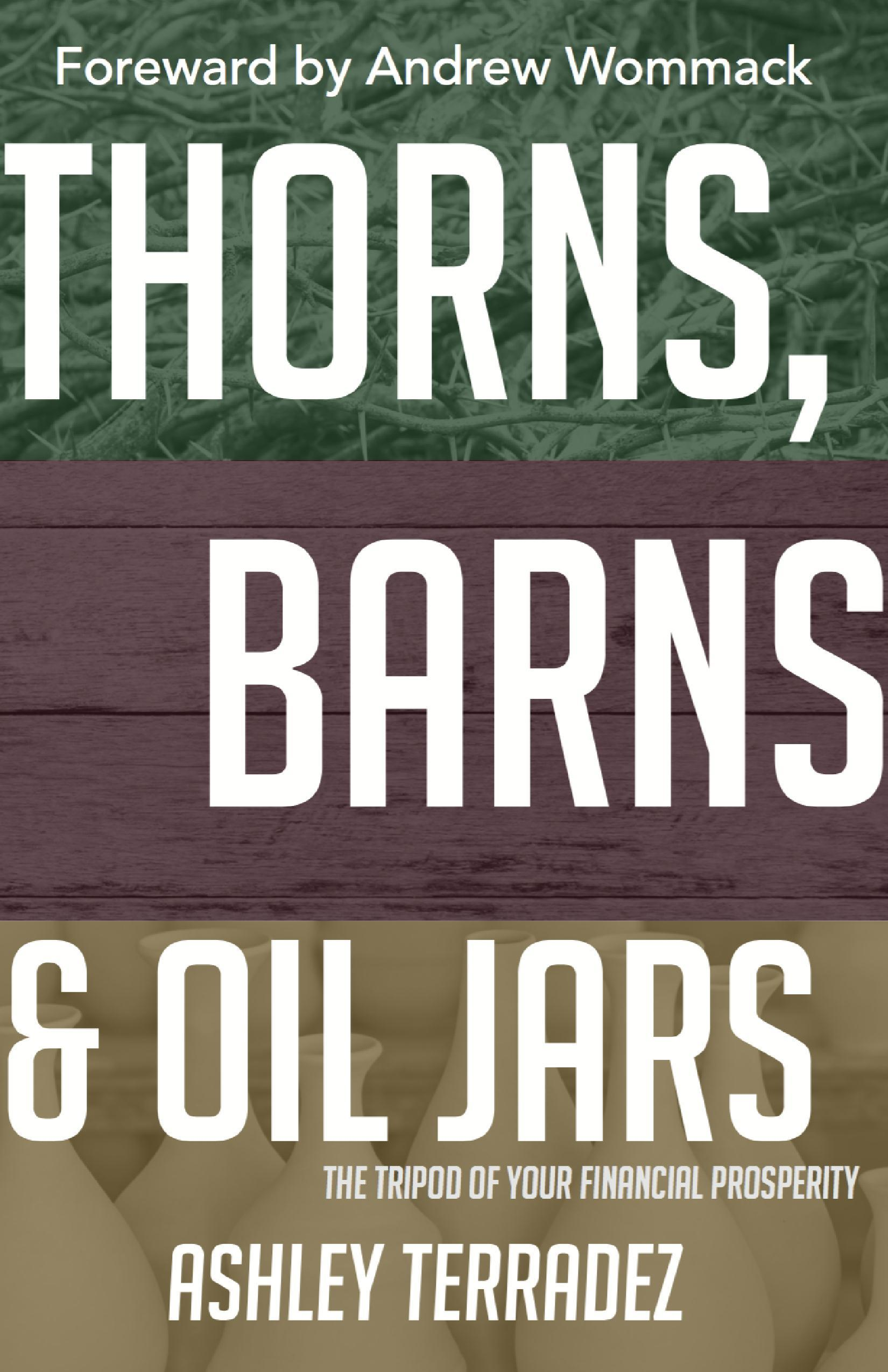 Thorns, Barns and Oil Jars: The Tripod of Your Financial Prosperity  by  Ashley Terradez