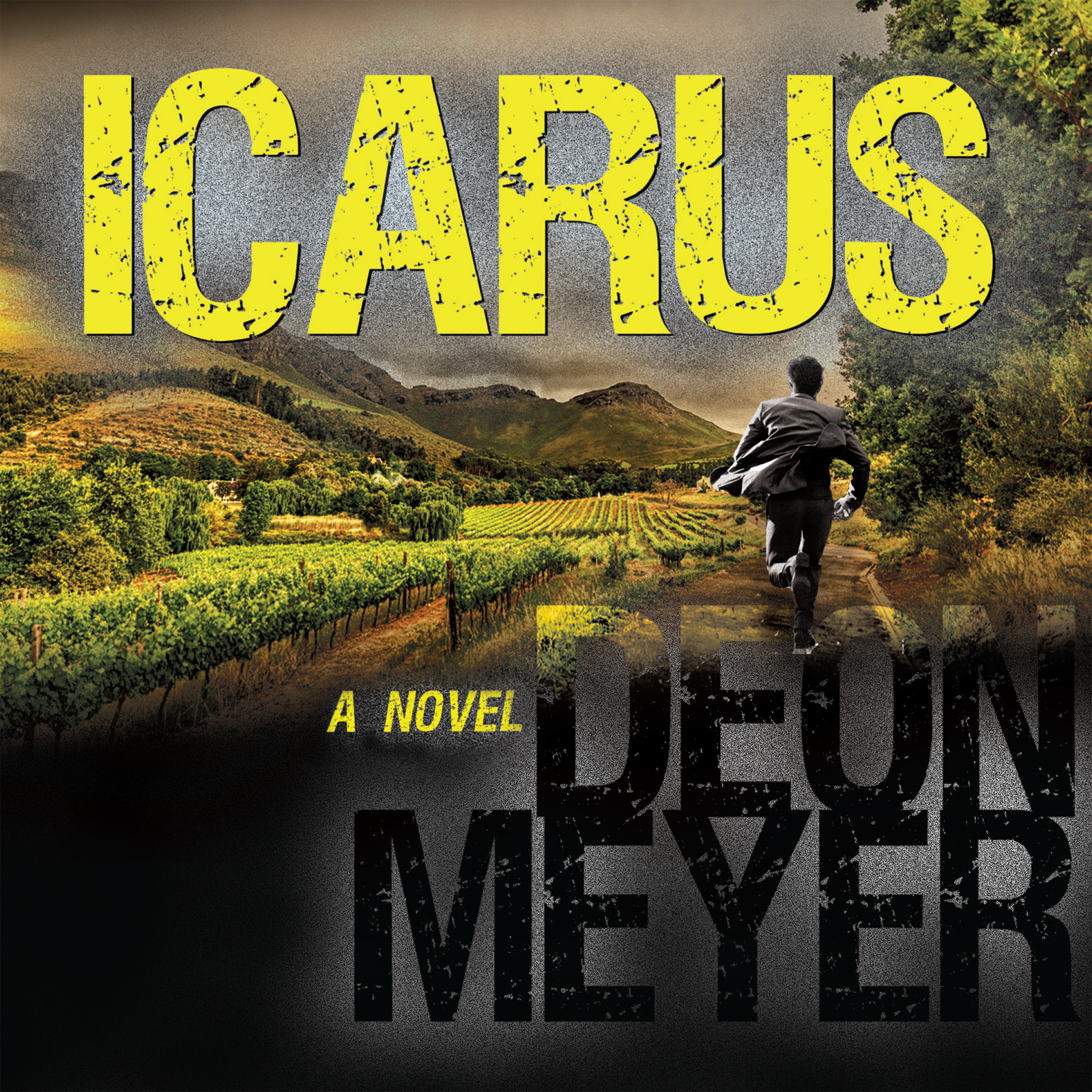 Icarus  by  Deon Meyer