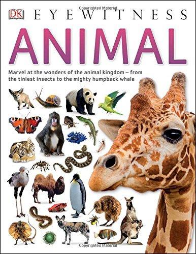 Animal  by  DK Publishing