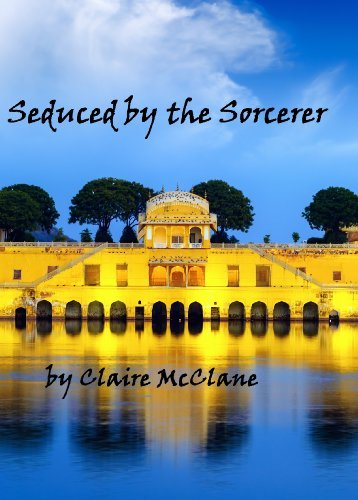Seduced  by  the Sorcerer by Clare McClane