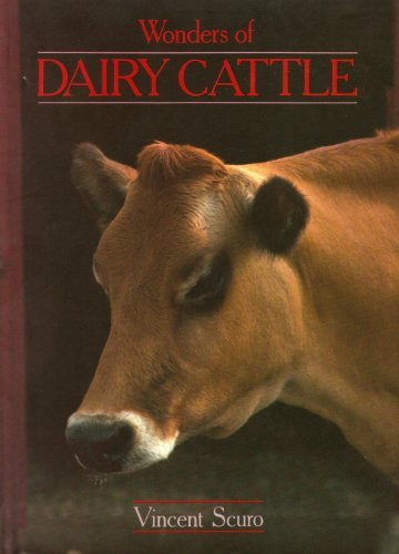 Wonders of Dairy Cattle  by  Vincent Scuro
