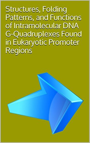 Structures, Folding Patterns, and Functions of Intramolecular DNA G-Quadruplexes Found in Eukaryotic Promoter Regions Yong Qin