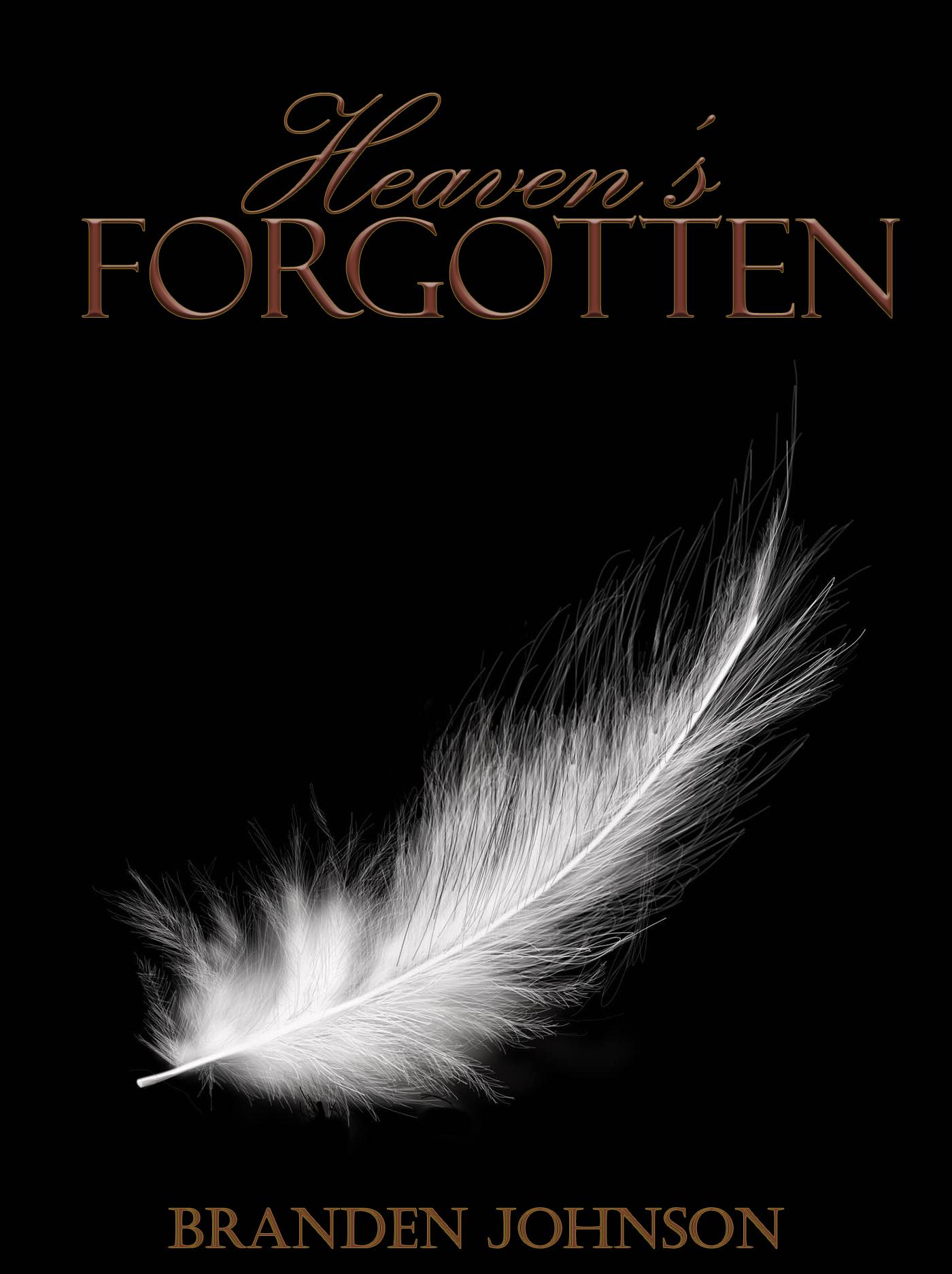 Heavens Forgotten  by  Branden Johnson