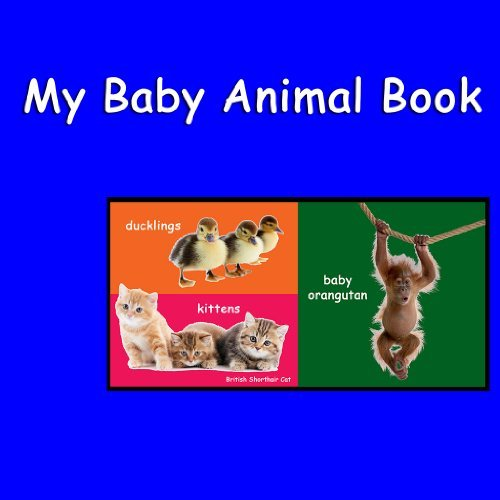 My Baby Animal Book Shannon Hale