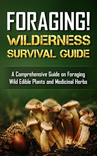 Foraging! Wilderness Survival Guide: Foraging wild edible plants and medicinal herbs (Bushcraft Book 1)  by  Davin Nollaig