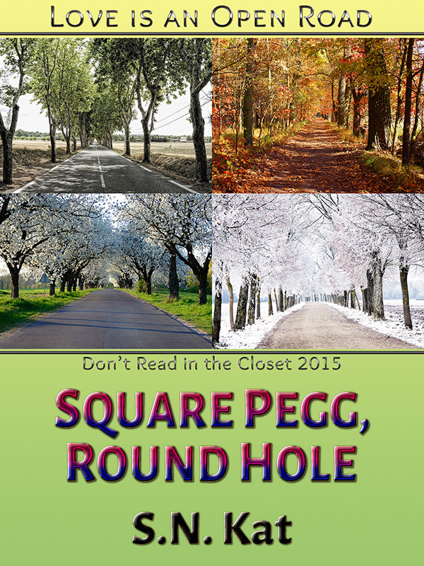 Square Pegg, Round Hole  by  S.N. Kat