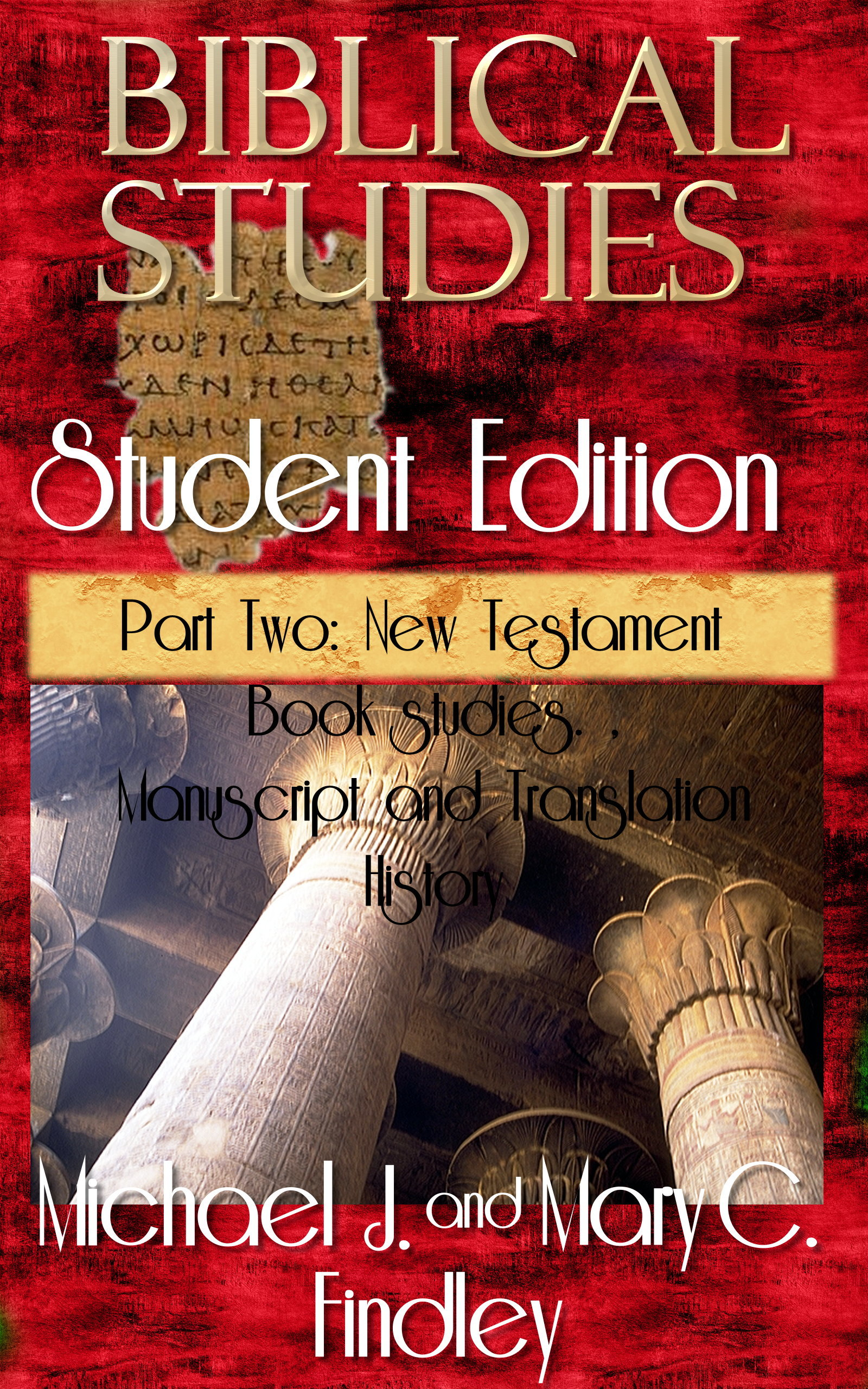 Biblical Studies Student Edition Part Two: New Testament  by  Michael J. Findley