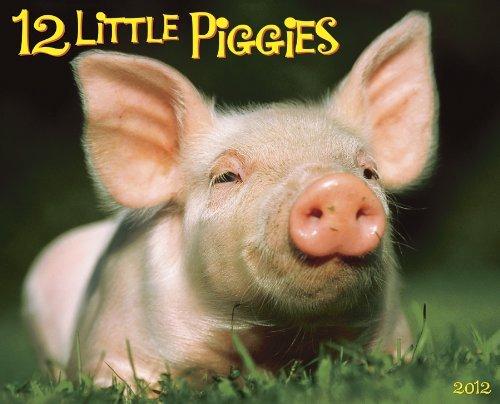 12 Little Piggies 2012 Calendar Willowcreek