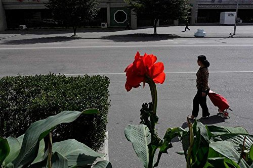 Everyday Life in North Korea (Scenery Gallery Series) Badirlon Leif