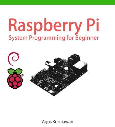 Raspberry Pi System Programming for Beginner Agus Kurniawan