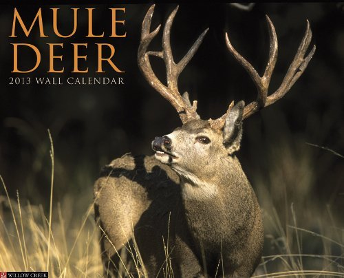 Mule Deer 2013 Wall Calendar NOT A BOOK