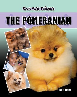 Pomeranian  by  Janice Biniok