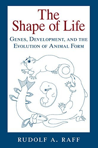 The Shape of Life: Genes, Development, and the Evolution of Animal Form Rudolf A. Raff