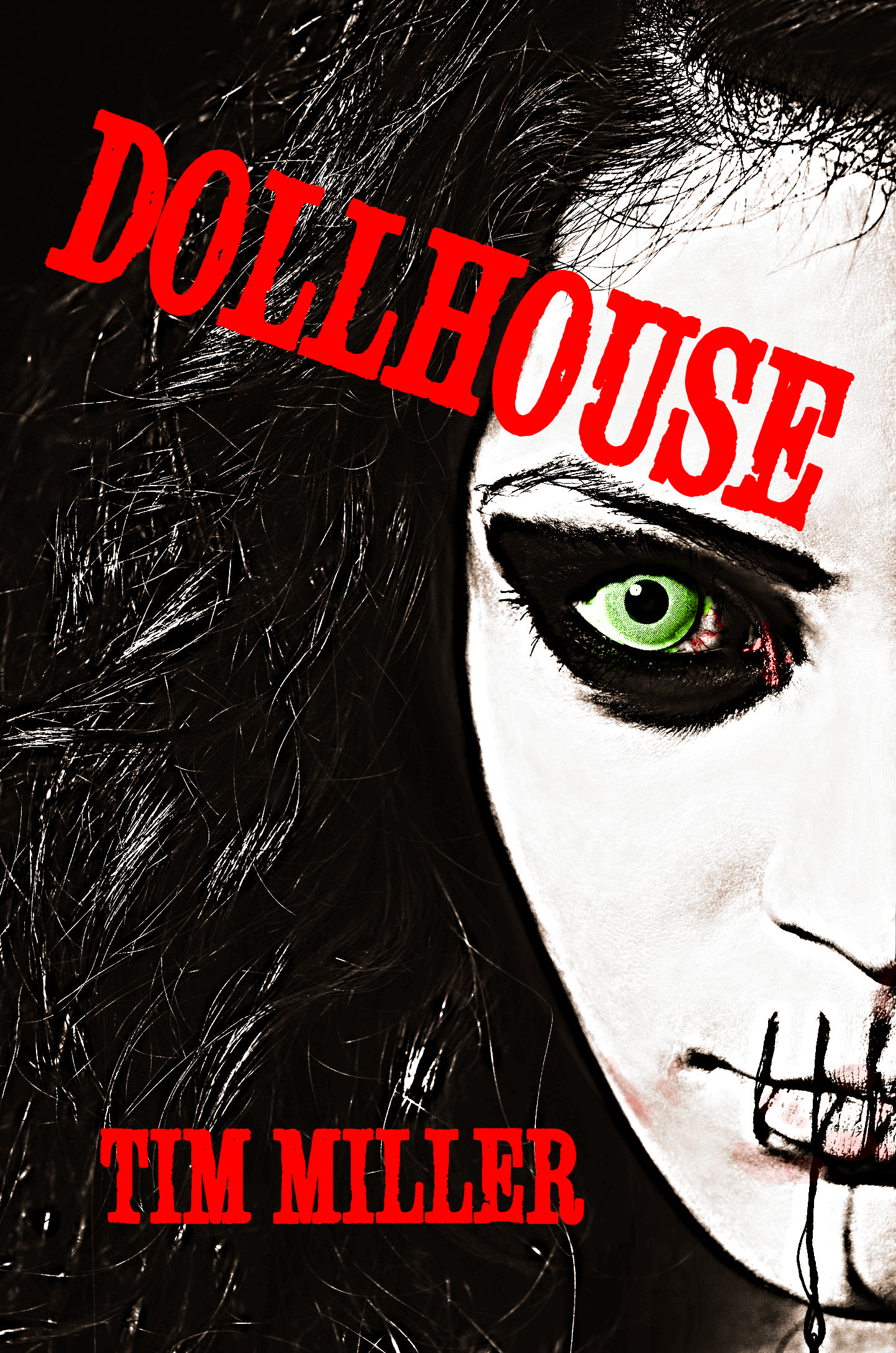 Dollhouse  by  Tim  Miller