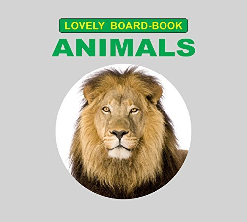 Animals (Lovely Board Book)  by  Dreamland Publications