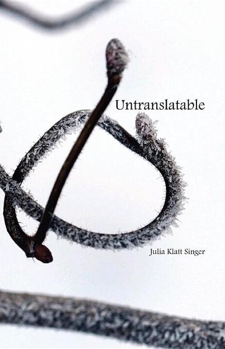 Untranslatable  by  Julia Klatt Singer