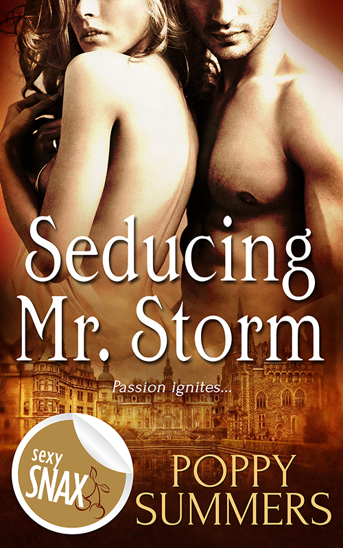 Seducing Mr Storm  by  Poppy Summers