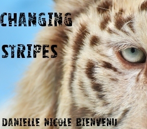 Changing Stripes  by  Danielle/