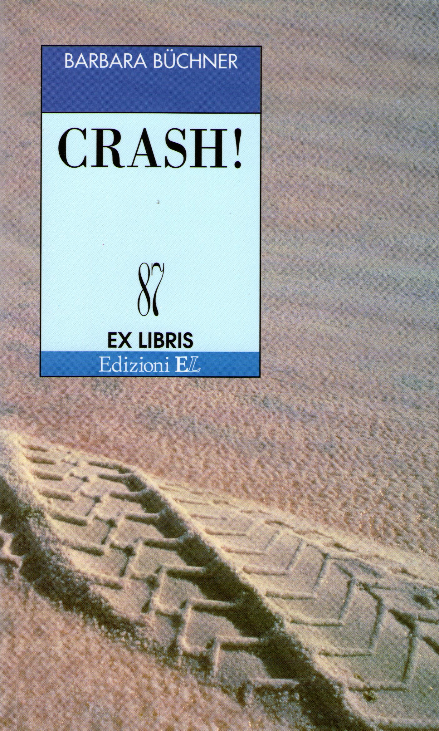 Crash!  by  Barbara Büchner