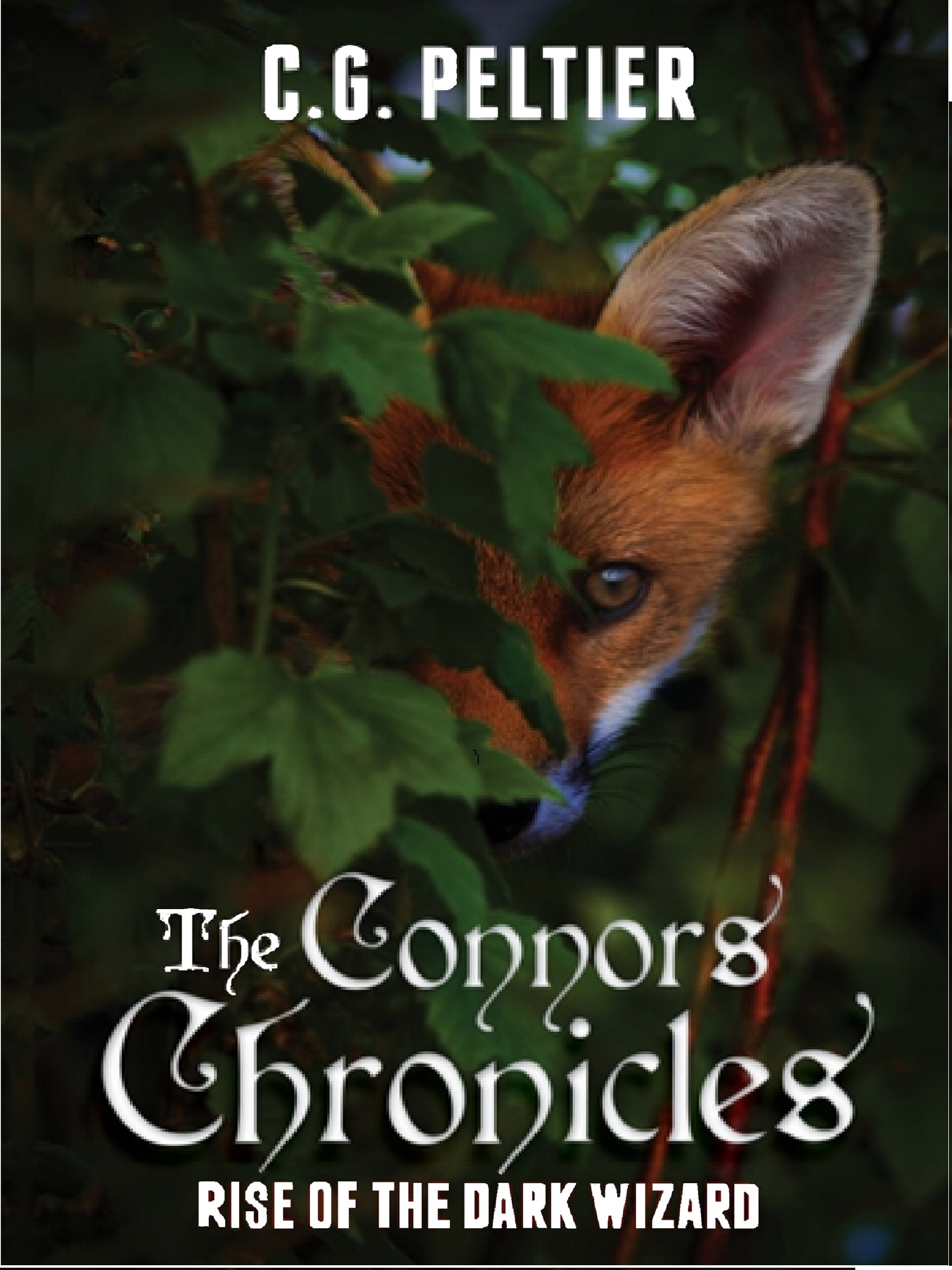 The Connors Chronicles, Rise of the Dark Wizard  by  C. G. Peltier