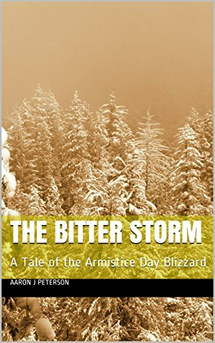 The Bitter Storm: A Tale of the Armistice Day Blizzard aaron j peterson